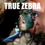 NEWS The electronic einzelgänger TRUE ZEBRA releases 123